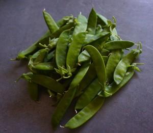 Горошек зеленый на лопатку сорт Неистощимый